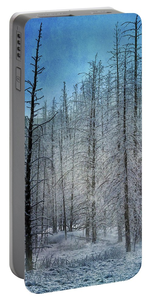 Yellowstone Portable Battery Charger featuring the photograph Forest Secrets 7917 by Karen Celella