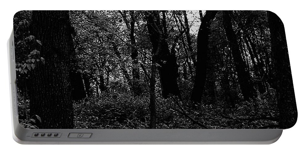 Forest Portable Battery Charger featuring the photograph Forest Through The Trees by Frank J Casella