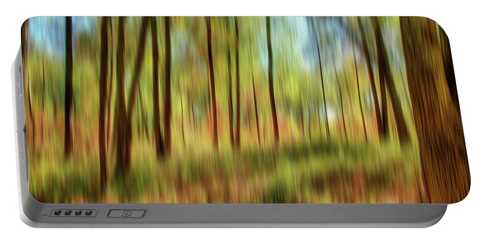 Trees Portable Battery Charger featuring the photograph Forest Vision by Ches Black