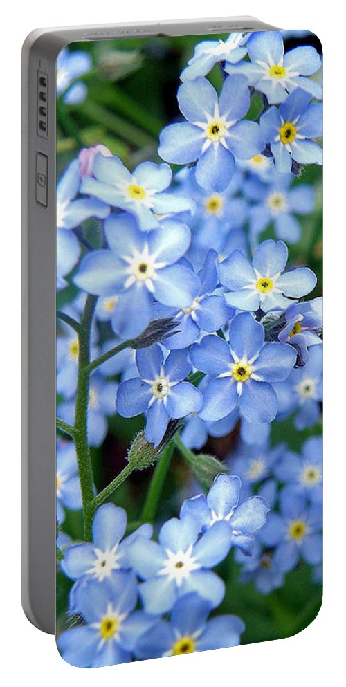 Forget-me-nots Portable Battery Charger featuring the photograph Forget-me-nots by Jean Hall