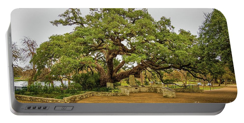 Jon Burch Portable Battery Charger featuring the photograph Founders Oak by Jon Burch Photography