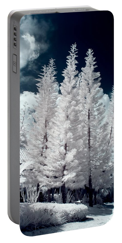 3scape Photos Portable Battery Charger featuring the photograph Four Tropical Pines Infrared by Adam Romanowicz