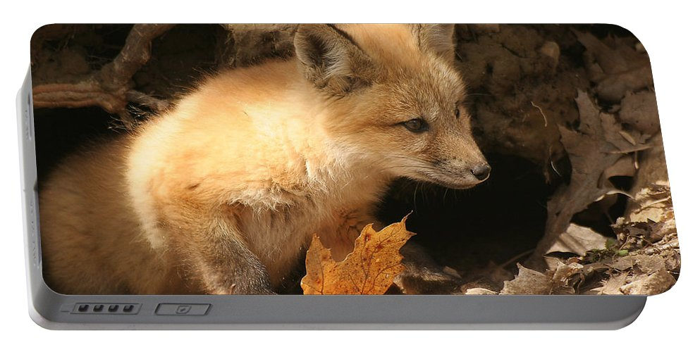Red Fox Portable Battery Charger featuring the photograph Fox Kit At Entrance To Den by Doris Potter