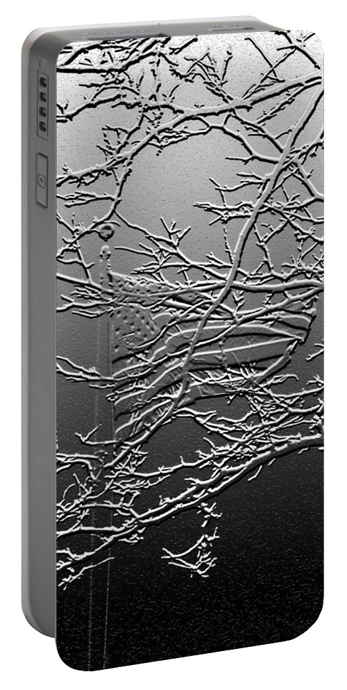 Lauren Radke Portable Battery Charger featuring the photograph Fractured America by Lauren Radke
