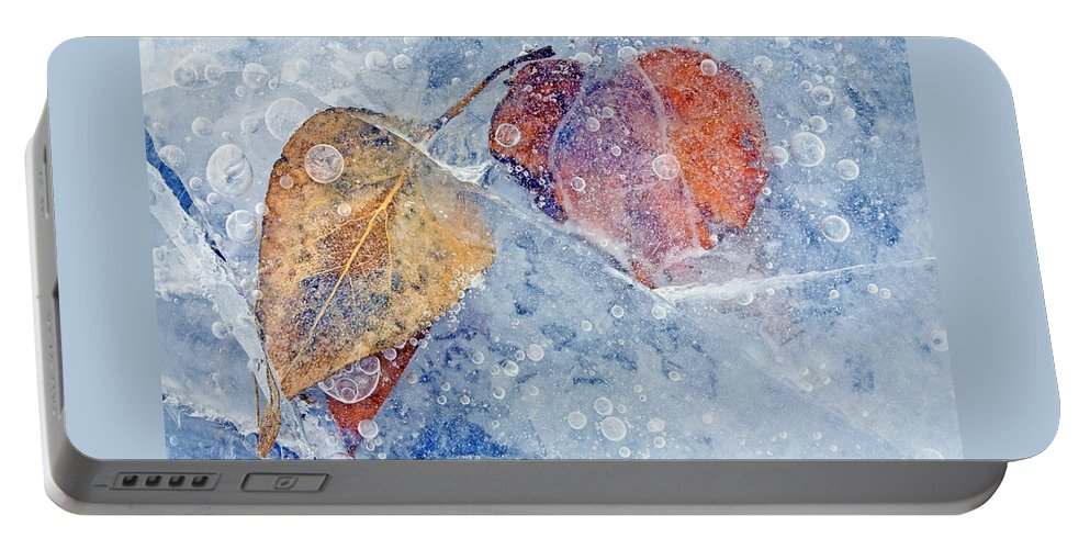 Ice Portable Battery Charger featuring the photograph Fractured Seasons by Mike Dawson