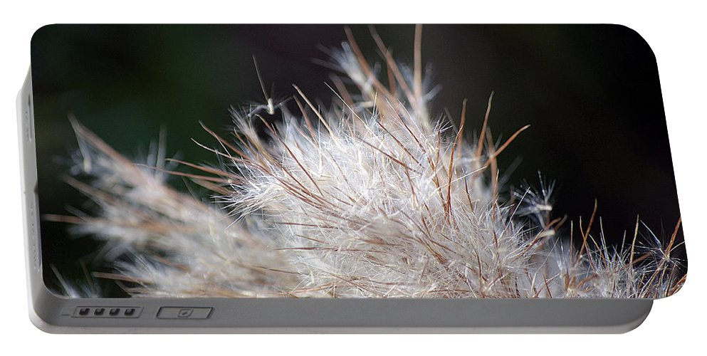 Weed Portable Battery Charger featuring the photograph Fragile Seeds by Kenneth Albin