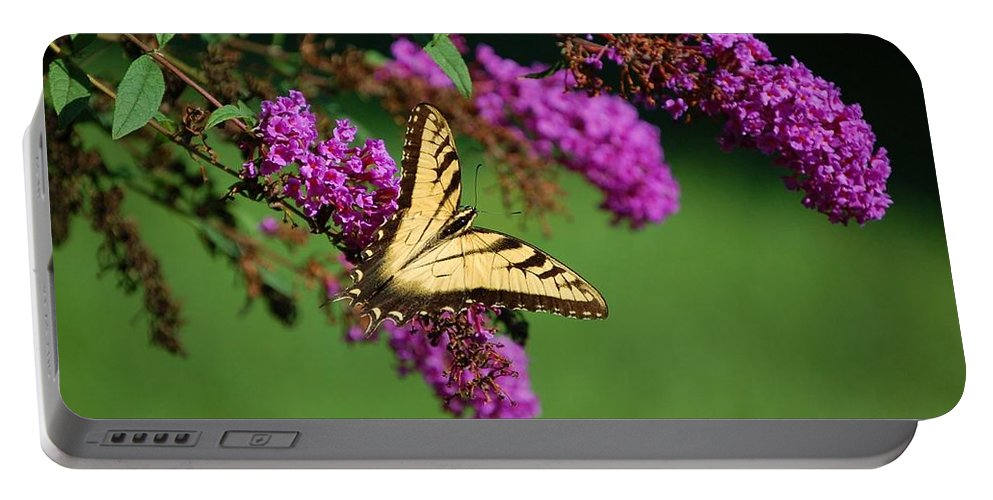 Butterfly Portable Battery Charger featuring the photograph Freedom by Debbi Granruth