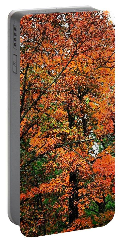 Art Portable Battery Charger featuring the photograph Fresco Autumn Diptych Left by Ellen Barron O'Reilly