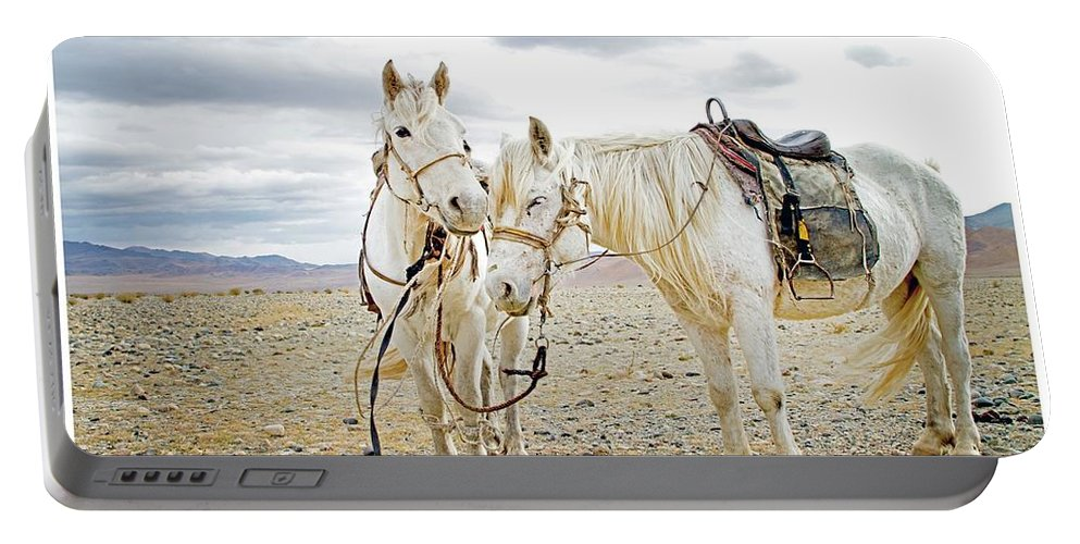 Horses Portable Battery Charger featuring the photograph Friends And Companions by Concrerte Gallery