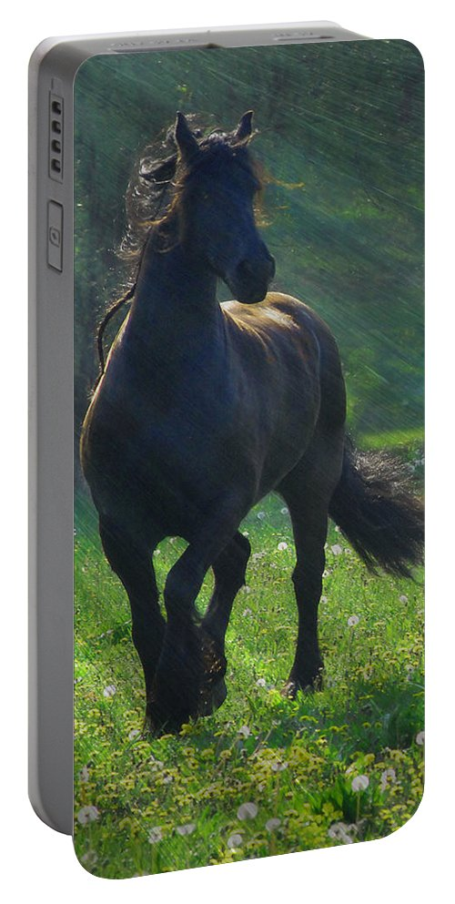 Horses Portable Battery Charger featuring the photograph Friesian Sun by Fran J Scott