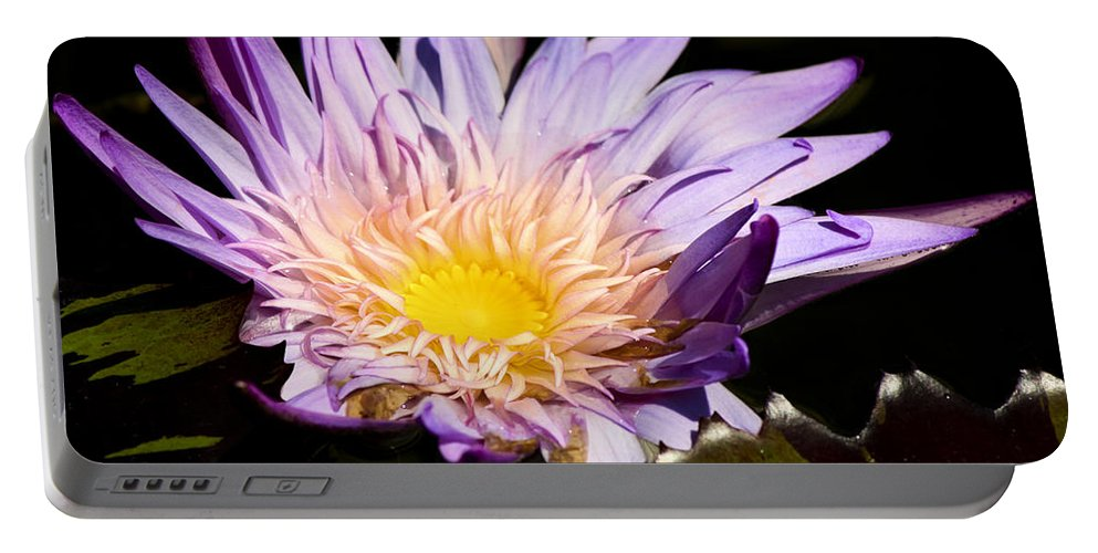 Purple Portable Battery Charger featuring the photograph Frilly Lilly by Teresa Mucha