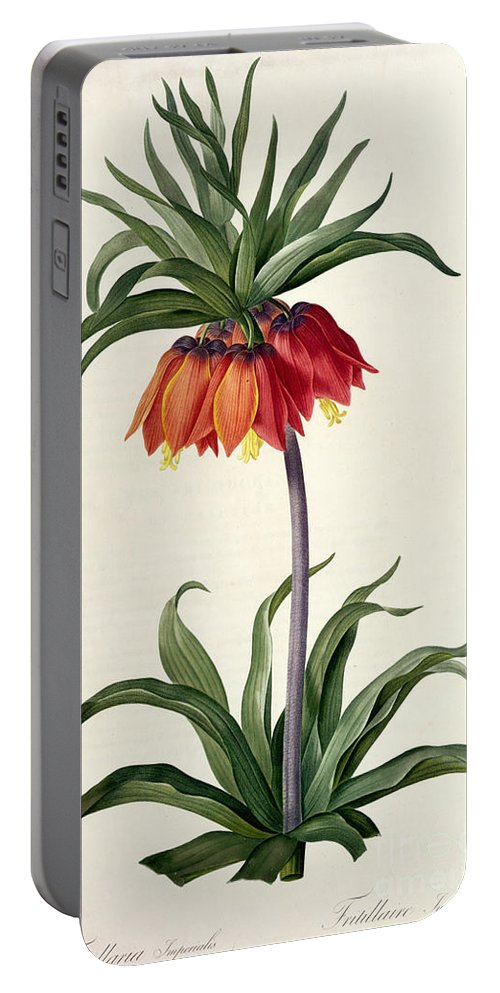 Fritillaria Portable Battery Charger featuring the drawing Fritillaria Imperialis by Pierre Joseph Redoute