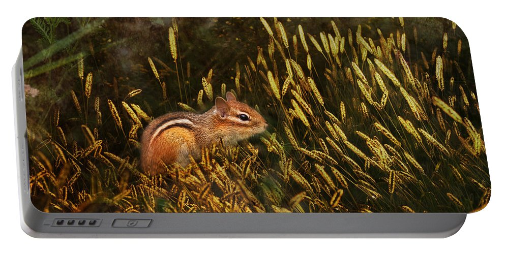 Sue Capuano Portable Battery Charger featuring the photograph Frolic by Susan Capuano