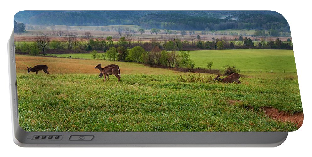 Cades Cove Portable Battery Charger featuring the photograph Frolicking On A Spring Morning by Bob Phillips
