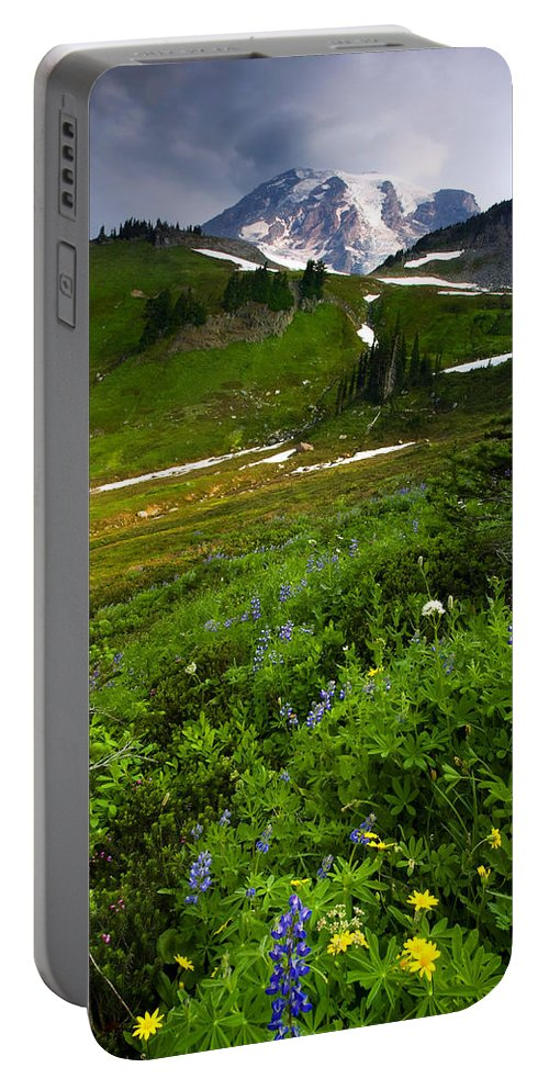 Rainier Portable Battery Charger featuring the photograph From The Top by Mike Dawson