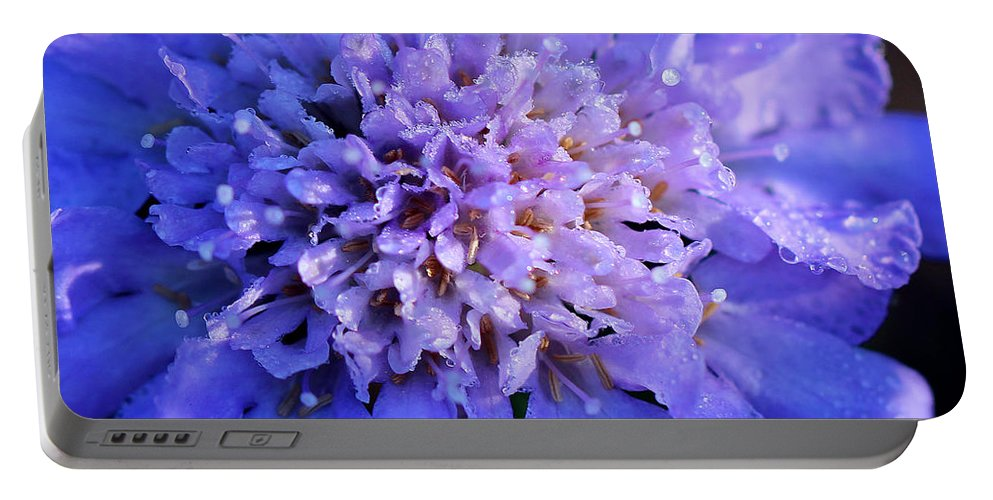 Flower Portable Battery Charger featuring the photograph Frosted Blue Pincushion Flower by Karen Adams