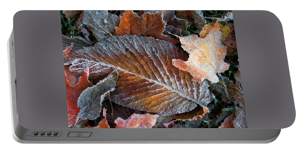 Leaves Fall Autumn Orange Red Brown Photograph Photography Photographer Portable Battery Charger featuring the photograph Frosted Painted Leaves by Shari Jardina