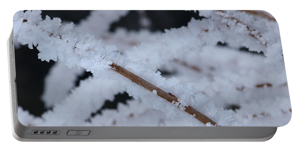 Frost Portable Battery Charger featuring the photograph Frosted Twigs by DeeLon Merritt