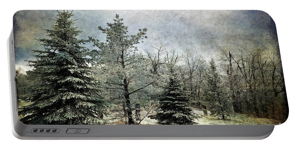 Snow Portable Battery Charger featuring the photograph Frosty by Lois Bryan