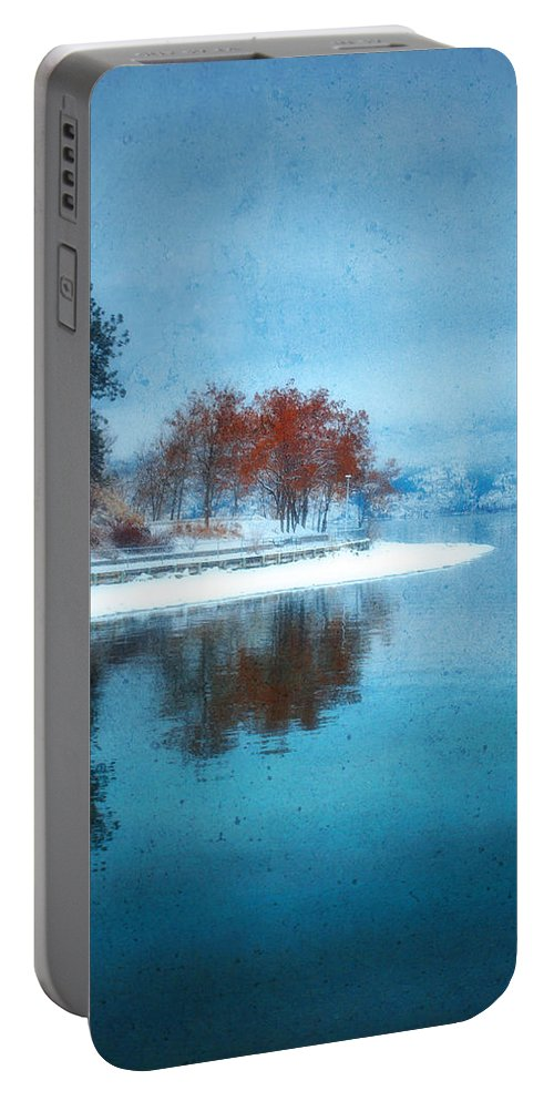 Blue Portable Battery Charger featuring the photograph Frosty Reflection by Tara Turner