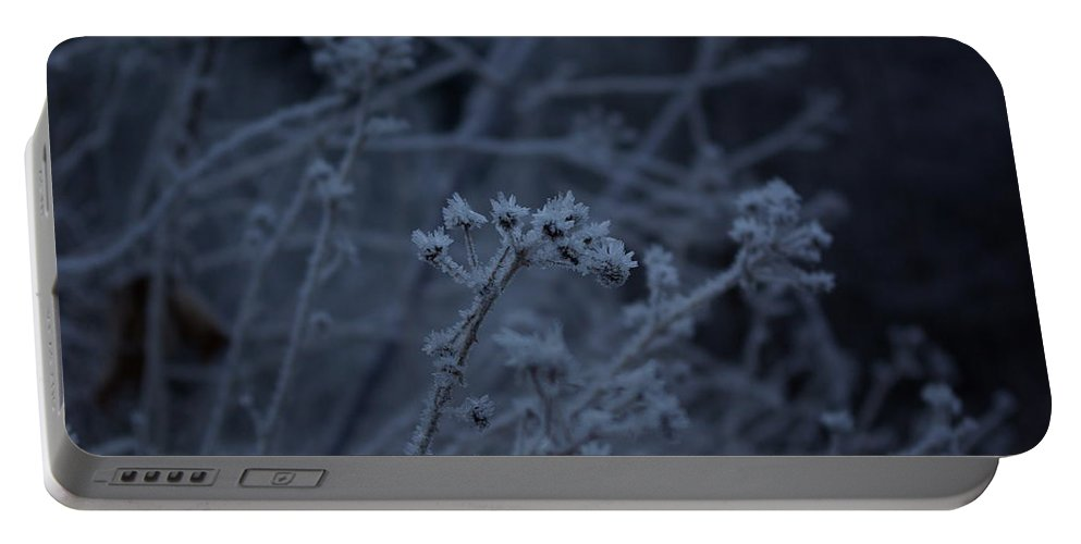 Frozen Portable Battery Charger featuring the photograph Frozen Buds by Cindy Johnston