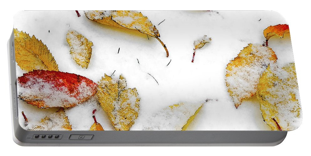Botanical Portable Battery Charger featuring the photograph Frozen Leaves by Svetlana Sewell