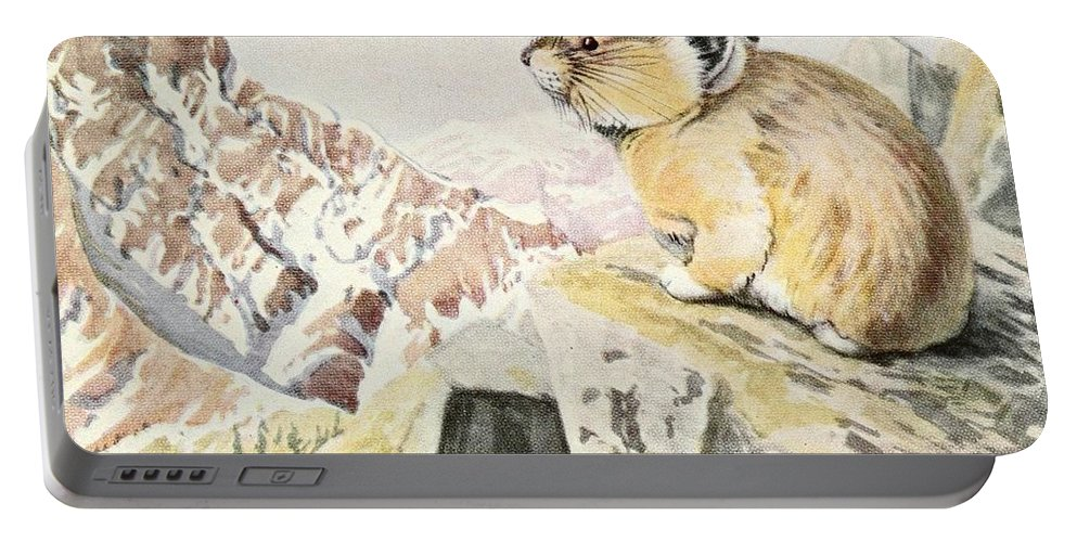 Fuertes Portable Battery Charger featuring the painting Fuertes, Louis Agassiz 1874-1927 - Burgess Animal Book For Children 1920 Pika by Louis Agassiz Fuertes