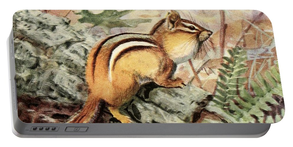 Fuertes Portable Battery Charger featuring the painting Fuertes, Louis Agassiz 1874-1927 - Burgess Animal Book For Children 1920 Striped Chipmunk by Louis Agassiz Fuertes