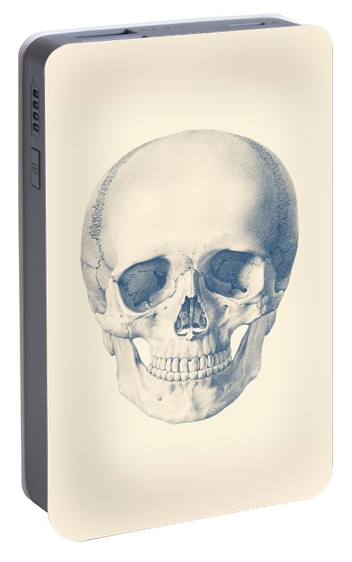 Full Human Skull Front Facing View Portable Battery Charger For