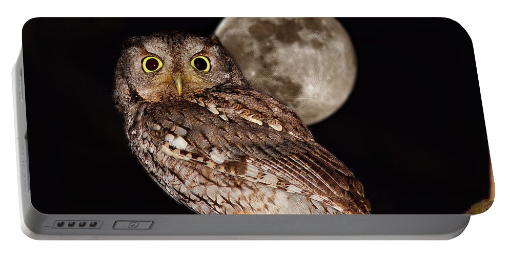 Asio Portable Battery Charger featuring the photograph Full Moon by Mircea Costina Photography