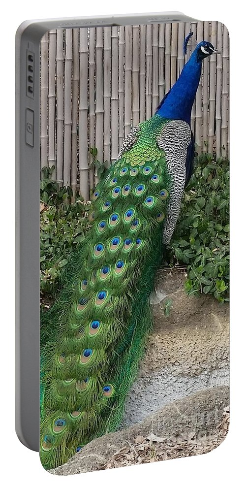 Peacock Portable Battery Charger featuring the photograph Full Right by Caryl J Bohn