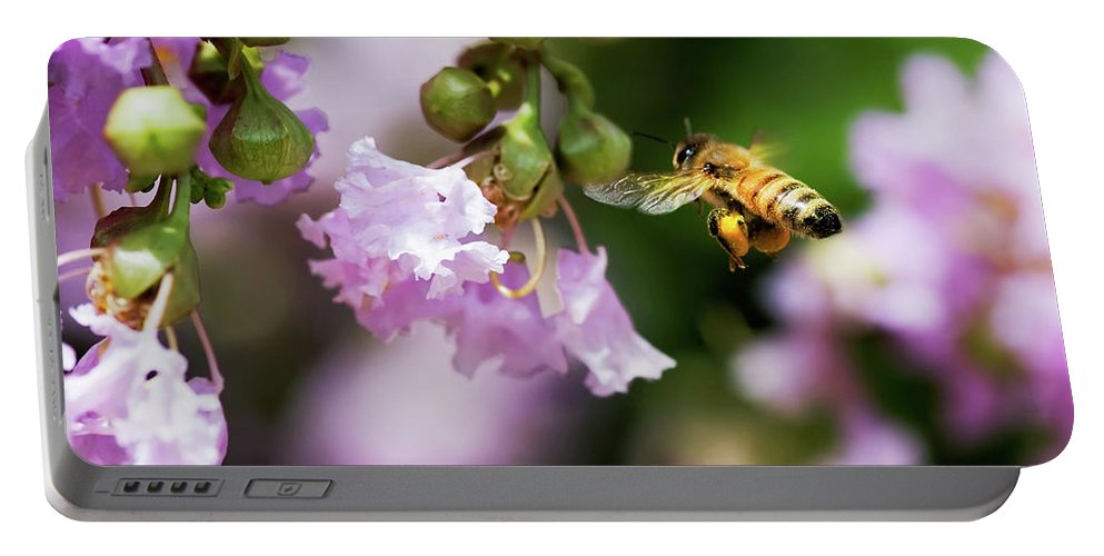 Honey Bee Portable Battery Charger featuring the photograph Fully Loaded by Betty LaRue