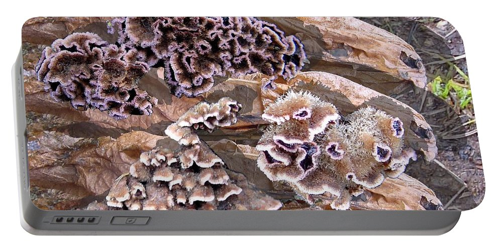 Fungi Art Portable Battery Charger featuring the digital art Fun Guy by Ron Bissett