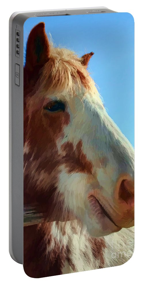 Animal Portable Battery Charger featuring the photograph Funny Face by Teresa Zieba