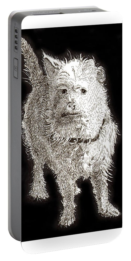 Ink Drawings Of Dogs  Dog Prints  Prints Of Dogs  Pen & Ink Drawings Of Dogs  Cute Black & White Dog Prints  Portable Battery Charger featuring the painting Fuzzy Molly by Jack Pumphrey