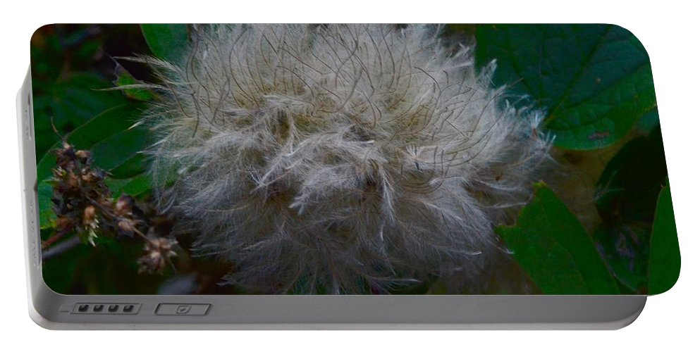 Nature Portable Battery Charger featuring the photograph Quamquam Flos by Dan Ya