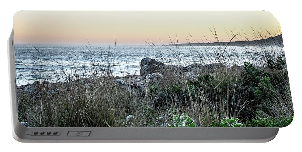 Fynbos Portable Battery Charger featuring the photograph Fynbos by Kyle Goetsch
