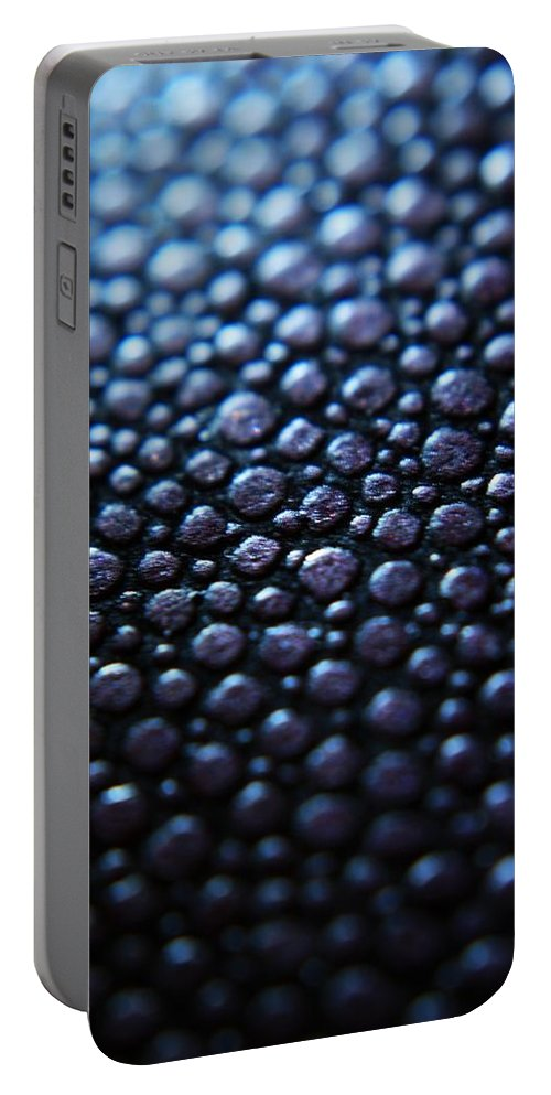 Circles Portable Battery Charger featuring the photograph Donald Trump's Caviar by Mandy Shupp