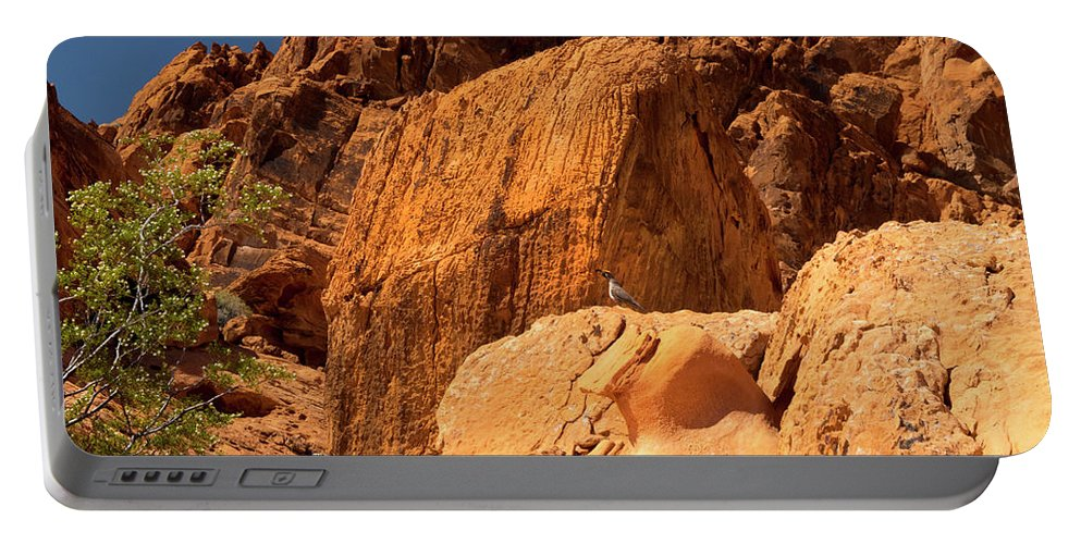 Landscape Portable Battery Charger featuring the photograph Gambels Quail In Profile Valley Of Fire by Frank Wilson