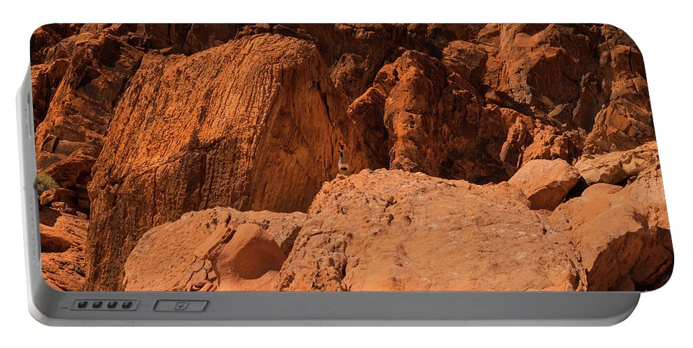 Landscape Portable Battery Charger featuring the photograph Gambels Quail Valley Of Fire by Frank Wilson