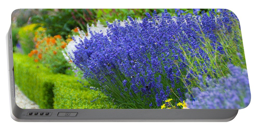 Blue Portable Battery Charger featuring the photograph Garden Flowers by Svetlana Sewell