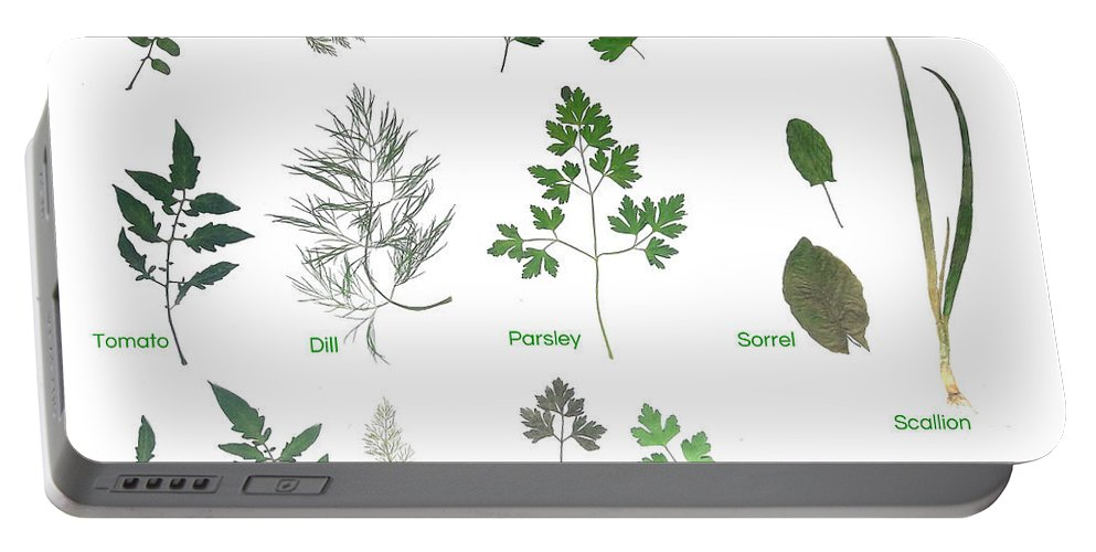 Garden Leaves Portable Battery Charger featuring the photograph Garden Herbs by Tibi K