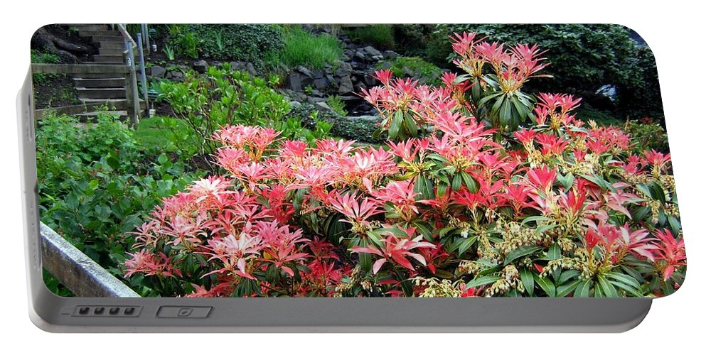 Houses Portable Battery Charger featuring the photograph Garden Oasis by Will Borden
