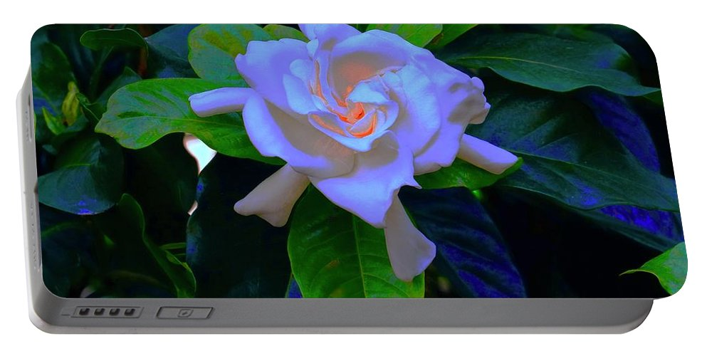 Chicago Botanic Garden Portable Battery Charger featuring the photograph Gardenia Heart Warmth by Tim G Ross
