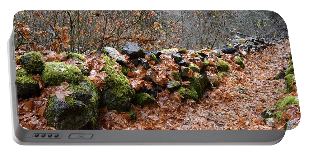 Rocks Portable Battery Charger featuring the photograph Gather No Moss by Thomas Sexton
