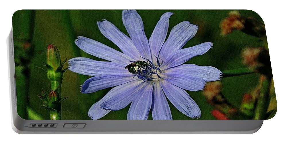 Flower Portable Battery Charger featuring the photograph Gathering Nectar by Deborahlynne Meyer