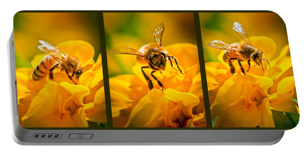 Bees Portable Battery Charger featuring the photograph Gathering Pollen Triptych by Bob Orsillo