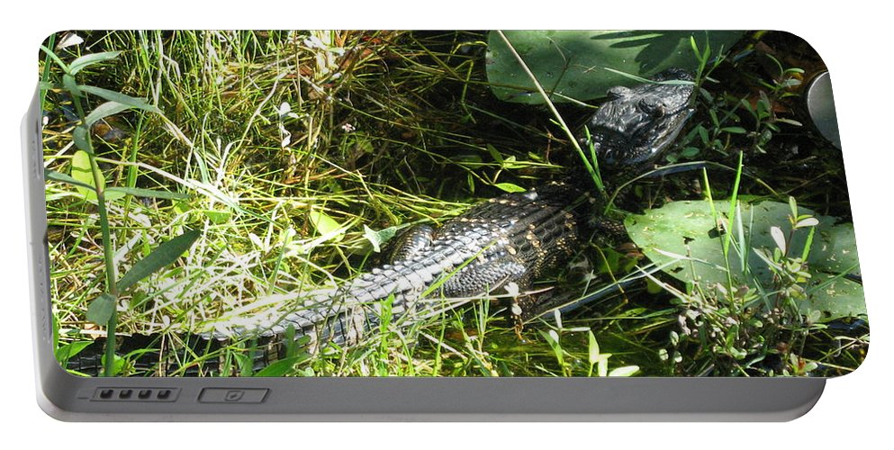 Gator Portable Battery Charger featuring the photograph Gator Baby by Christiane Schulze Art And Photography