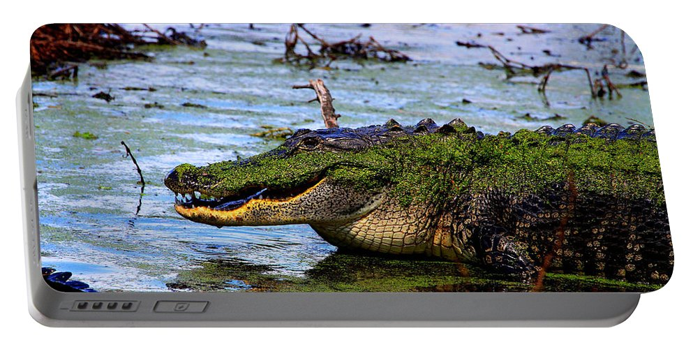 American Alligator Portable Battery Charger featuring the photograph Gator Growl by Barbara Bowen