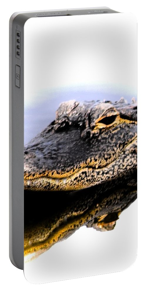 Alligator Portable Battery Charger featuring the photograph Gator Profile Reflection by Sheri McLeroy